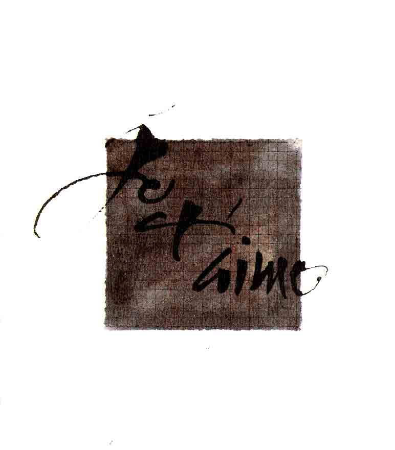 aquarelle, encre, brou, 24 x 32 cm
